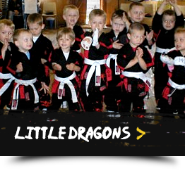 Little Dragons Classes